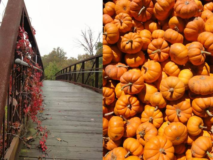 Autumn - Bridge Pumpkin