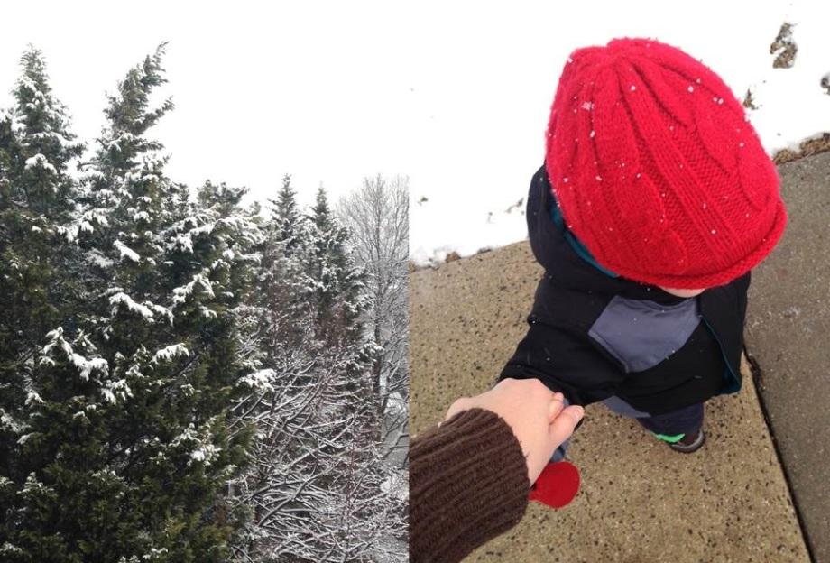 Snow-RedCap