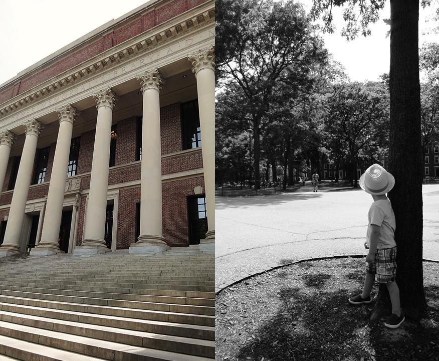 Harvard1
